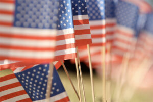 Sun Valley Jose Mier image of American Flags on Veterans' Day